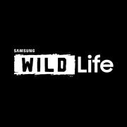 Samsung Wild Life