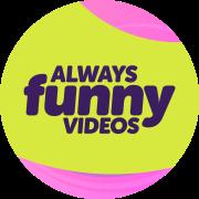 Always Funny Videos